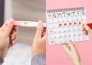 تشخیص زمان تخمک گذاری برای باردار شدن